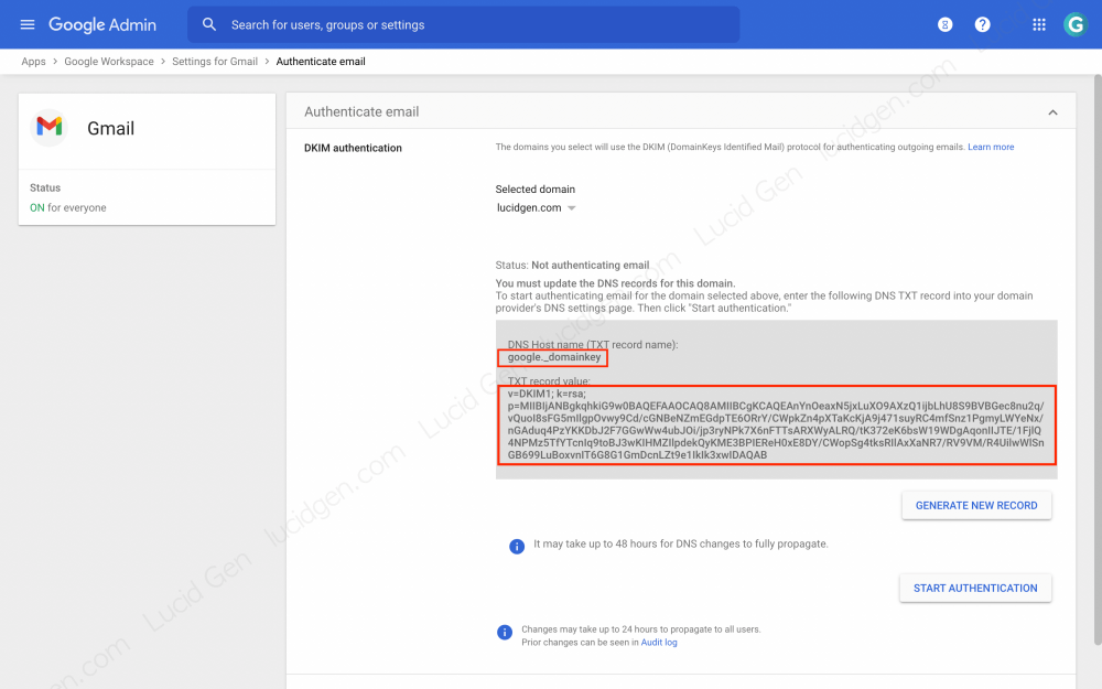 How to set up DKIM Google Workspace - Copy the DKIM key for configuration to DNS